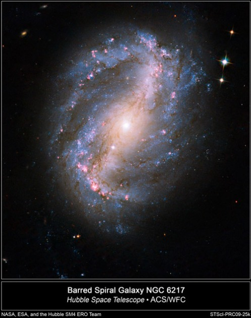 HST-NGC6217. Click to enlarge.